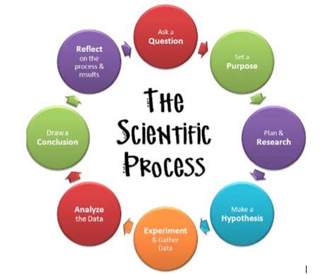 2 peer-reviewed sourcesarticles How peer-review works